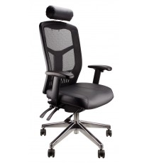 High Back Executive Mesh Deluxe Pro Chair - Leather