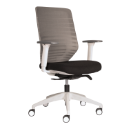 Easton Mesh Back Task Chair